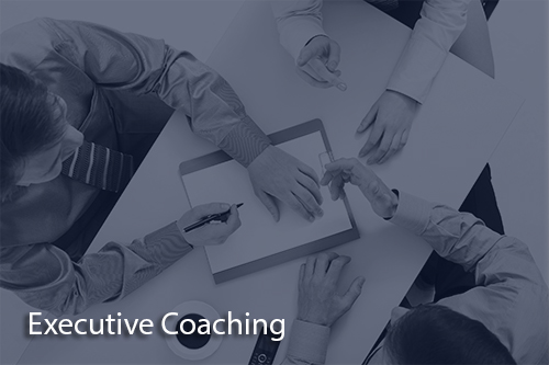 executive coaching2 Talent Development