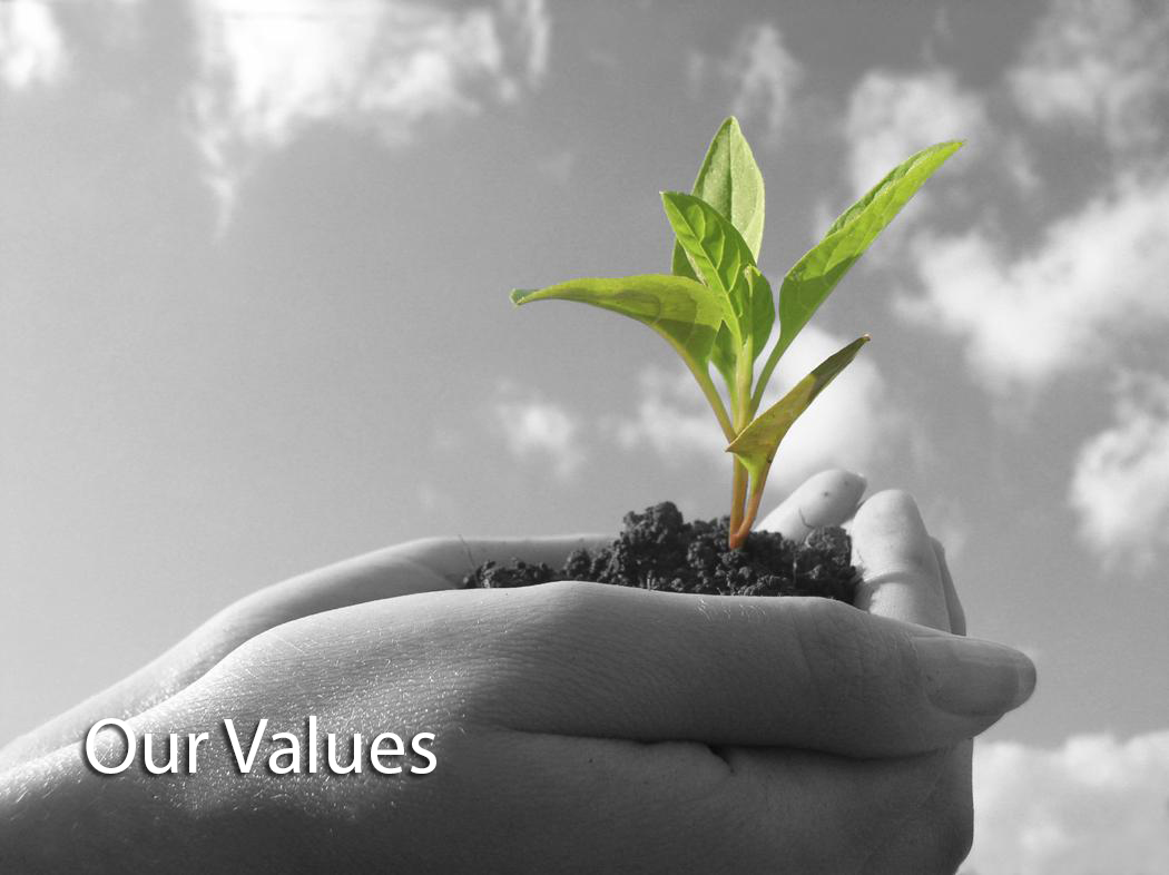our value bw Our Values