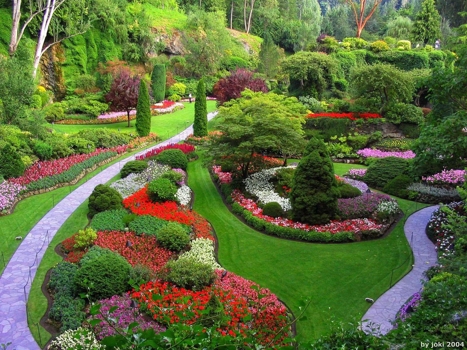 A garden metaphor for leadership development challenge for Create a landscape design